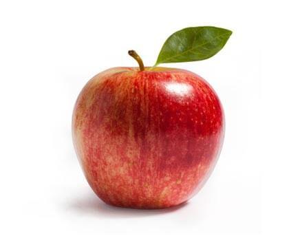 りんご病(伝染性紅斑)
